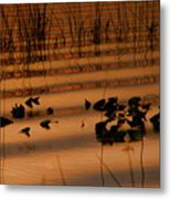 The Difference Metal Print
