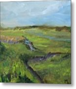 The Distant View Of The Marsh Metal Print