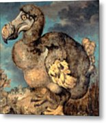 The Dodo, 1651  Metal Print