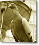The Dove Metal Print