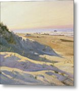 The Dunes Sonderstrand Skagen Metal Print by Holgar Drachman