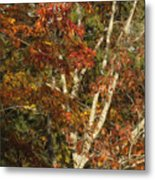 The Dying Leaves' Final Passion Metal Print