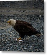 The Eagle And Its Prey Metal Print