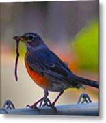 The Early Bird Metal Print