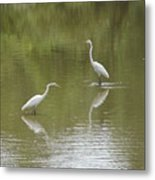 The Egret Pond Metal Print