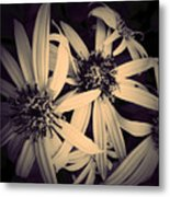 The Embrace Metal Print