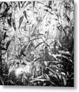 The Enchanted Greenhouse Metal Print