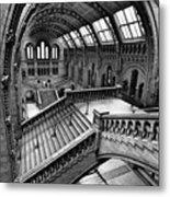 The Escher View Metal Print by Martin Williams