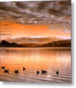 The Evening Geese Metal Print