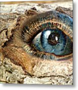 The Eye Of Nature 1 Metal Print