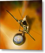 The Eye Of The Fish Only Metal Print