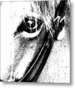 The Eye Of The Horse Metal Print
