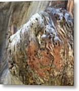 The Face Metal Print