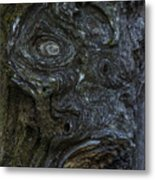The Face Signed Metal Print