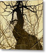 The Feminine Figure Metal Print