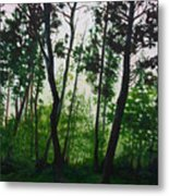 The Fen Metal Print