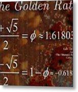 The Fibonacci Equation Catus 1 No. 1 H  Metal Print