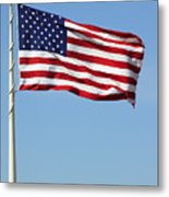 The Flag Metal Print