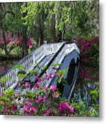 The Flower Bridge Metal Print