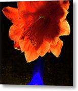 The Flower Of Cactus In A Blue Vase. Metal Print