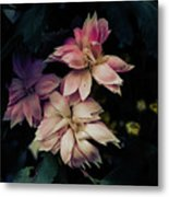 The Flowers Of Romance. Metal Print