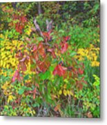 The Foliage That Seems To Be Almost Sentient  Metal Print
