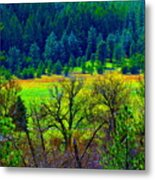 The Forest Echoes With Laughter 2 Metal Print