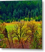 The Forest Echoes With Laughter Metal Print