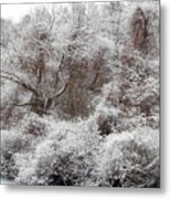 The Forest Hush Metal Print