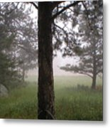 The Forest In The Mist Metal Print