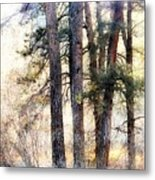The Forest Speaks Metal Print