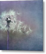 The Four Winds Metal Print