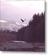 The Freedom To Fly Metal Print