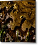 The Frothy Veil Metal Print