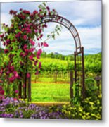 The Garden At The Winery Metal Print