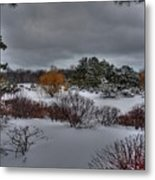The Garden In Winter Metal Print by David Bearden