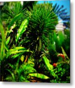 The Garden Path Metal Print