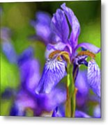 The Gentleness Of Spring 4 - Paint Metal Print