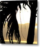 The Glow Of Maui Metal Print