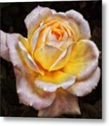 The Glowing Rose Metal Print