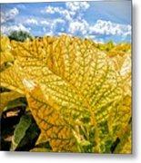 The Golden Leaf Metal Print