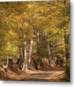 The Golden Road Metal Print