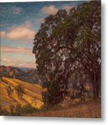 The Golden State Metal Print