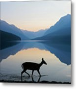 The Grace Of Wild Things Metal Print