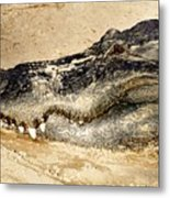 The Great Alligator Metal Print