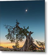 The Great American Eclipse On August 21 2017 Metal Print
