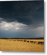 The Great Migration Metal Print