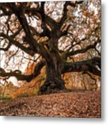 The Great Oak Metal Print