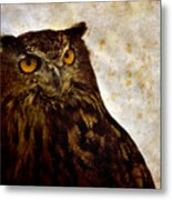 The Great Owl Metal Print