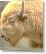 The Great White Buffalo Metal Print